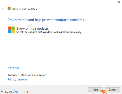 how to prevent a specific update on windows 10