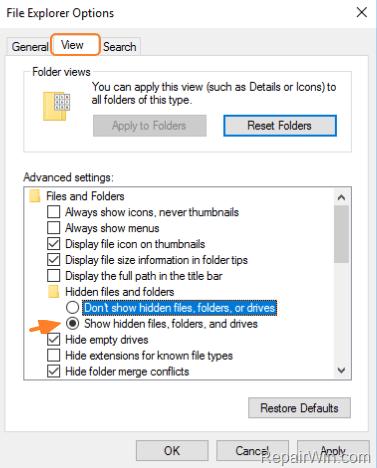 enable hidden files view