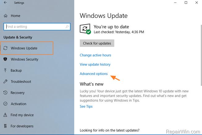 pause updates windows 10